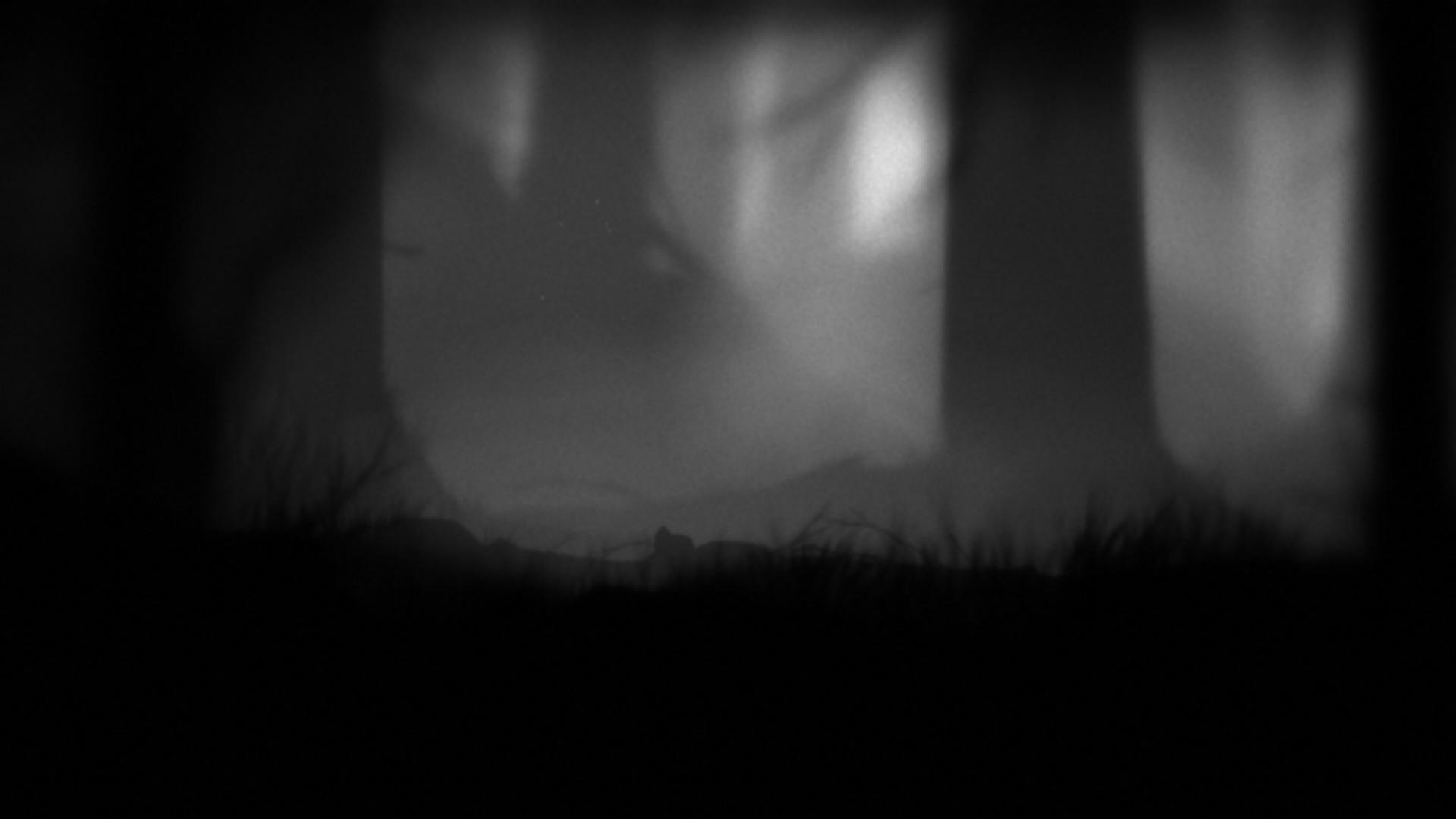 """Solange sich der Winter so trist gibt, wie im atmosphärischsten aller Hüpfspiele (""""Limbo""""), gibt es viele lange Abende, um das bunte Angebot historischer Inszenierungen in Videospielen auszuprobieren. Was ich dafür empfehle, siehe weiter unten (Abb.: eigener Screenshot aus Limbo)"""
